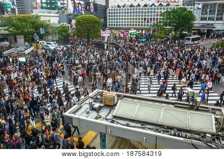 Tokyo, Japan - April 22, 2017: aerial view from Occitane Cafe of unidentified pedestrians in Shibuya Crossing, one of the busiest crosswalks in the world.Shibuya Crossing a popular attraction in Tokyo