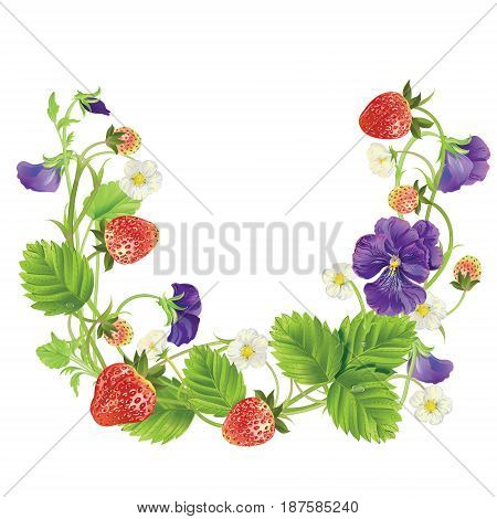 Strawberry and heartsease with leave, water drops and flowers round frame. Vector realistic illustration. Design for grocery, farmers market, tea, natural cosmetics, summer garden design element.