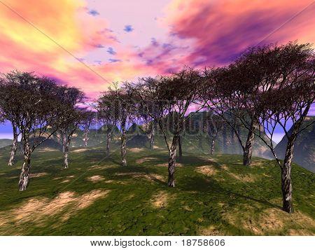 fantasy trees grove