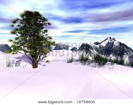 fantasy evergreen tree in winter landscape
