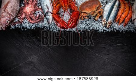 Fresh tasty seafood served on black stone. Top view. Close-up.
