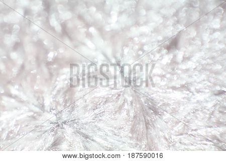 Light sparkling palm wax close up structure background
