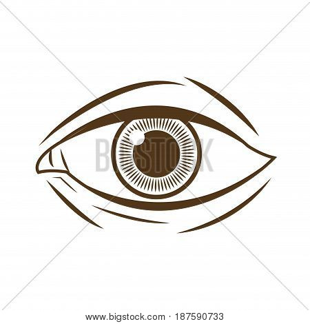 hand drawing eye human expression image vector illustration