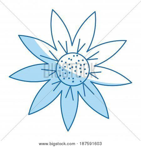 outline flower natural decoration delicate vector illustration