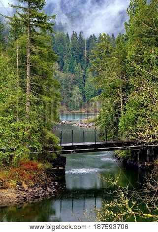 Bridge over Small Creek in Hayward Lake Park . This creek is going to the Hayward Lake Reservoir. This place is located in the territory of Maple Ridge.