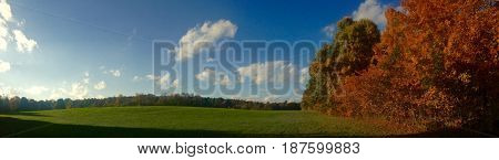 Pretty pasture on a sunny day during autumn