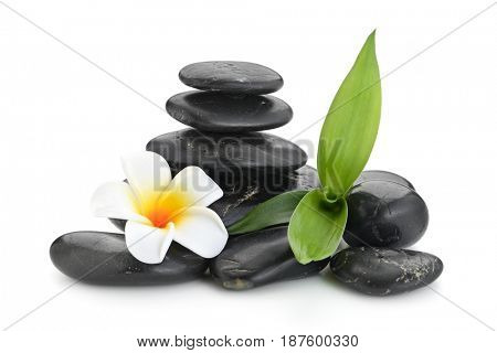 frangipani and bamboo on the zen basalt stones isolated on white background