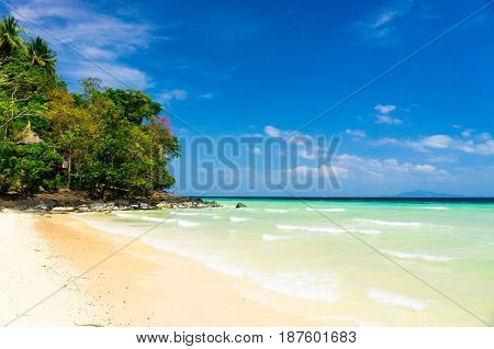 Shore Landscape In a Sunny Paradise