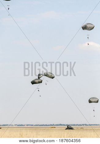 A multinational brigade of paratroopers take part in the 'Swift Response' airborne training at the Smardan Training Area in Romania, on August 26, 2015.