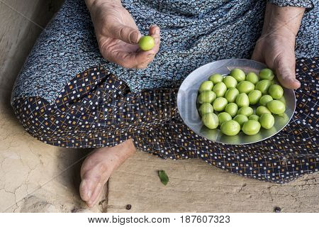 Woman's hand holding a steel plate of green plums