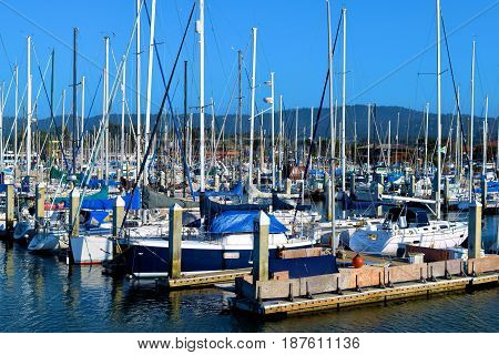 May 9, 2017 in Monterey, CA:  Sail boats, yachts, and motor boats docked at the Monterey Bay Docks where people can taken their boats out to the Pacific Ocean and visitors can rent boats taken in Monterey, CA