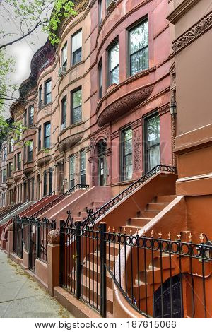 Harlem Brownstones - New York City