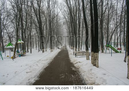 Alley In The Park In The Center Of Belgorod