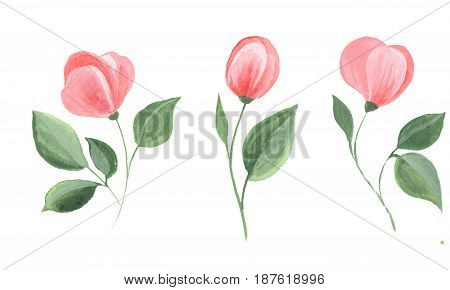 Set of watercolor flowers. Isolated on white background