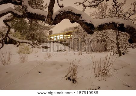Light shines from a house in the trees on a snowy night. The house is framed by the snow-covered knarled branch of a Garry Oak tree. Taken on the edge of Cedar Hill Golf Course Victoria BC.