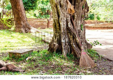 A straw broom set to rest on a large old tree in the midday sun
