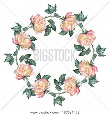 Floral wreath, isolated on white background. Watercolor roses 1