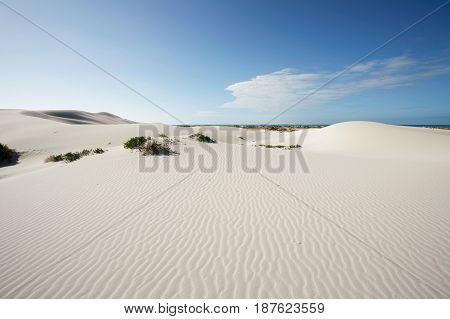 Sand dunes with clean ripples at Eucla, Western Australia, near the border of South Australia.