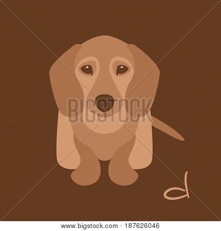 Dachshund dog puppy  vector illustration style Flat