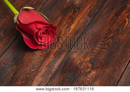 Beautiful red rose on wooden table romantic background with copyspace