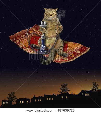 The cat is smoking a hookah on the magic carpet.