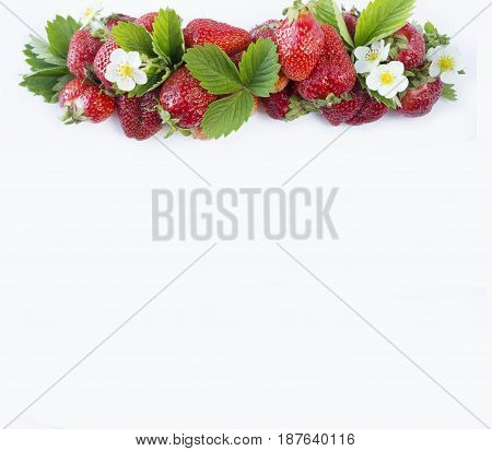 Ripe strawberries at border of image with copy space for text. Berries on white background. Top view