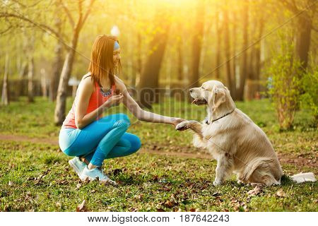 Labrador gives paw to girl in park during day
