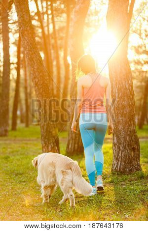 Woman with dog walks among trees, photo from back