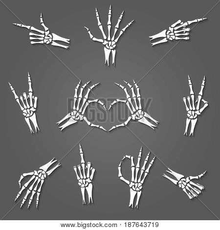 Skeleton hand signs isolated on grey background. Xray arm bones or hands gestures vector illustration