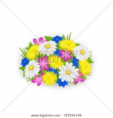 Bouquet of flowers. Wildflowers isolated. Vector illustartion.