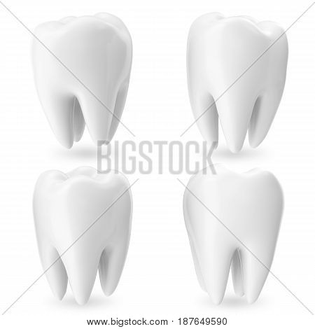 Set teeth, 3d concept dental care isolated on white with shadow, for your design project. 3D rendering