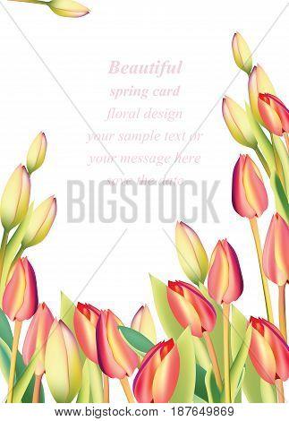 Red tulip flowers Spring season invitation background. Vector illustrationa