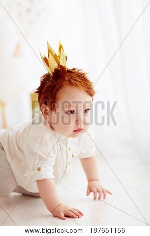 Cute Baby Boy With Decorative Crown Crawling On The Floor
