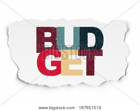 Banking concept: Painted multicolor text Budget on Torn Paper background