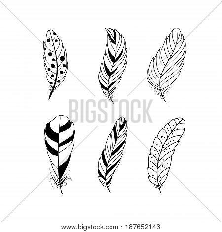 Set of feathers. Boho tribal style. Isolated on white background. Vector illustration.