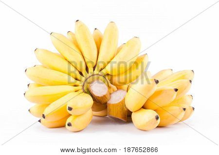 ripe egg banana and  hand of golden bananas   on white background healthy Pisang Mas Banana fruit food isolated