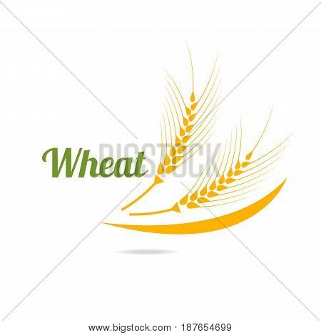 Logotype template with wheat. Wheat ears isolated on white background. Easy to use business template.