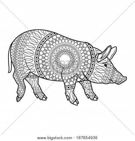 cute pig cartoon animal farm image vector illustration