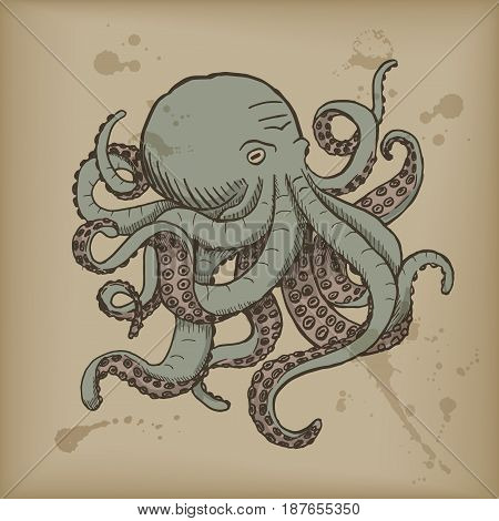 Octopus. Vector engraving vintage illustrations. Isolated on white background.