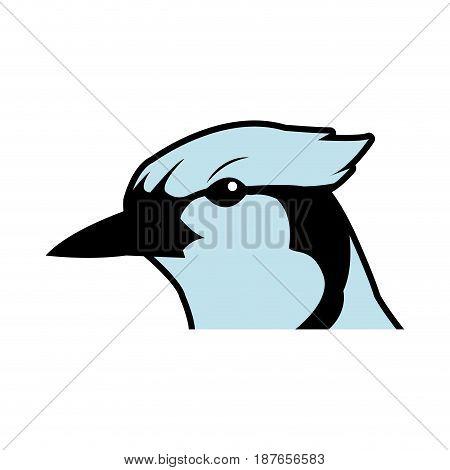 bird head natural feather fauna animal vector illustration