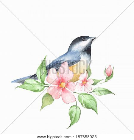 Bird and floral branch. Watercolor painting