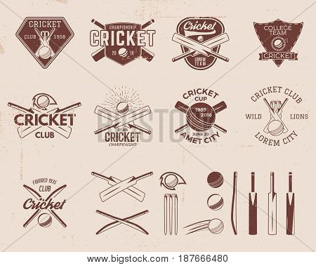Set of retro cricket sports template logo designs. Use as icons, badges, label, emblems or print. Vector illustration sport championship. Isolated on scratched background. Stock illustration.