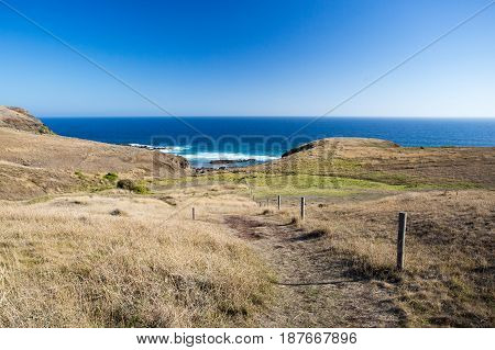 Walking track to Cairn Beach on the Mornington Peninsula, Victoria, Australia