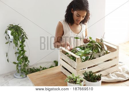 Young beautiful african girl smiling working with plants in box at workplace. White wall.