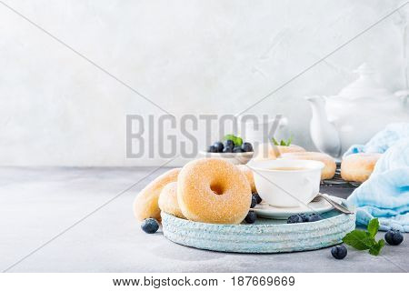 Doughnuts with powdered sugar and fresh blueberries on light gray background. Selective focus. Copy space.