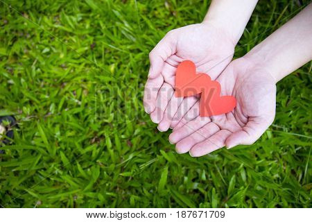 Two hands holding two red hearts on green grass background.