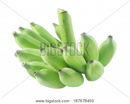 Fruits A Bunch of Unripe Green Wild Asian Bananas or Cultivated Banana Isolated on White Background.