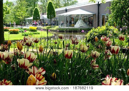 KEUKENHOF HOLLAND - MAY 14 2017: Willem-Alexander Pavilion in the Royal Keukenhof Park