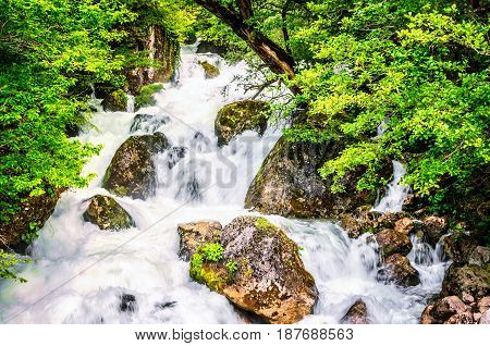 Jungle landscape with flowing turquoise water of georgian cascade waterfall at deep green forest. Mountain of georgia.