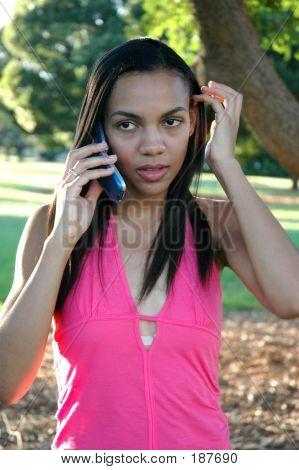 African American Female